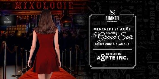 Le Grand Soir  (Chapitre1) - Adopte Inc.