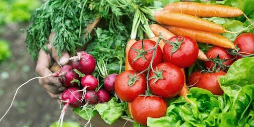 Getting a Harvest - Summer Vegetables - Session 1