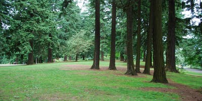Writing and Nature Play Summer Camp - Ages 11-14