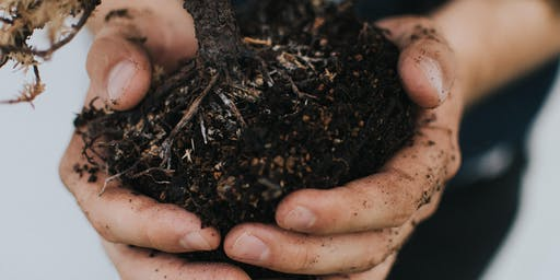 Living Soil @ Footprints Ecofestival