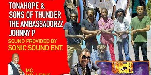 Sonic Sound Present 2019 Reggae Music Festival
