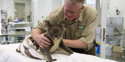 Gold Coast Open House 2019 - Currumbin Wildlife Hospital