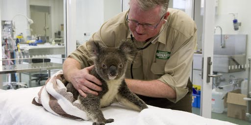 Gold Coast Open House 2019 - Currumbin Wildlife Hospital