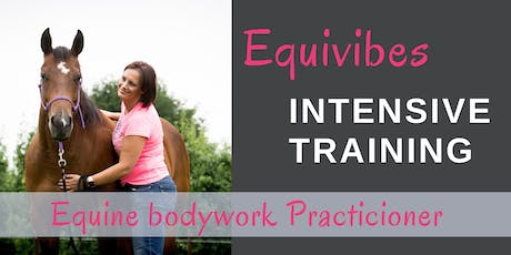 Equine Bodywork Practioner tickets