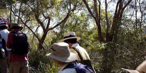 Biodiversity Month - Wolli Creek Full Walk