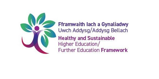 A journey to a healthier wales: college and university settings