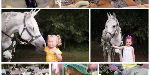 Unicorn Tea Party (photos and horse rides etc)