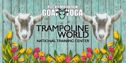 Goat Yoga - August 25th (Trampoline World Gymnastics)