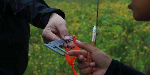 Citizen Science Tree Survey