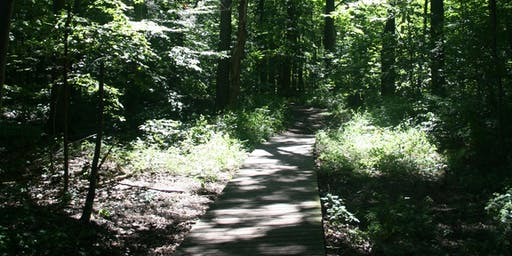 Forest Interpretive Hike