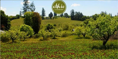Orchard Tour with Ethic Ciders