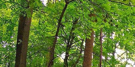 Notions d'aménagement forestier 1 (Ste-Victoire-de-Sorel) billets