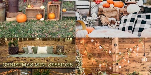 Fall Mini's