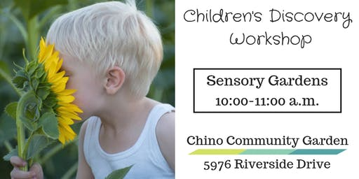 Children's Discovery Workshop-Sensory Gardens