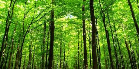 Notions d'aménagement forestier 2 (Cowansville) billets