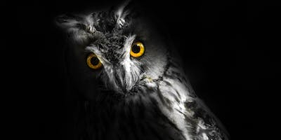 Duke Farms After Dark: Owl Pellets (for adults)
