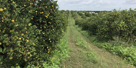 Citrus Soil Health Field Day - Fertility, Cover Crops, & Compost tickets