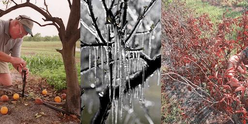 Winter Weather School 2019