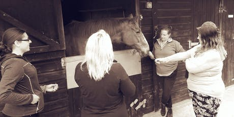 Self Selection & Essential Oils Workshop for Equine Owners Part 2 tickets