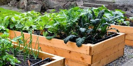 Raised Bed Gardening with David Rizzo tickets