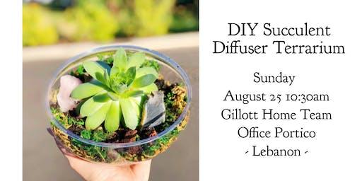 DIY Succulent Diffuser Terrarium