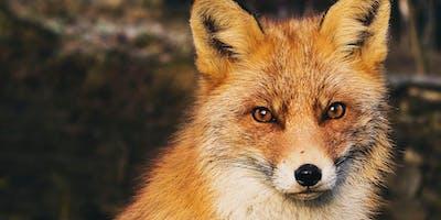 Critical Animal Studies - A Masterclass