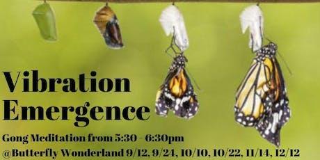 Vibration Emergence (gong meditation) tickets