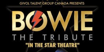 BOWIE the Tribute in the Star Theatre!
