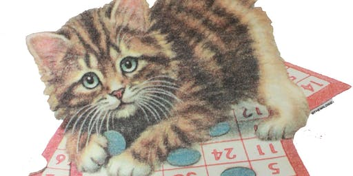 Itty Bitty Kitty Purse Bingo Fundraiser