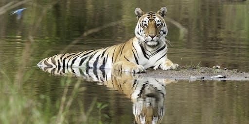 Indian Wildlife Extravaganza Information Evening