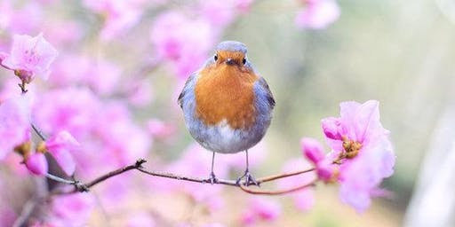 Bring on Spring with our Guest Speaker (Event Cancelled)