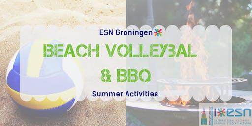 Summer activities: volleyball tournament + BBQ