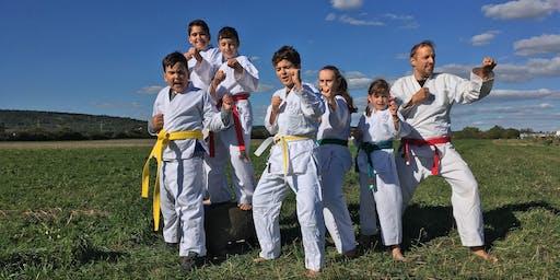 Taekwondo-Naturcamp