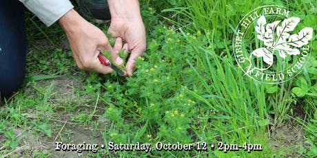 Gibbet Hill Farm Field School • Foraging  tickets
