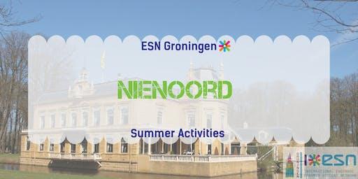 Summer activities: Nienoord + picnic