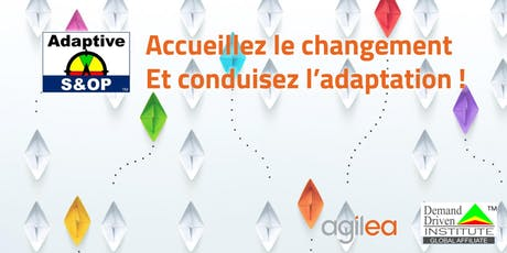 Formation Adaptive S&OP billets