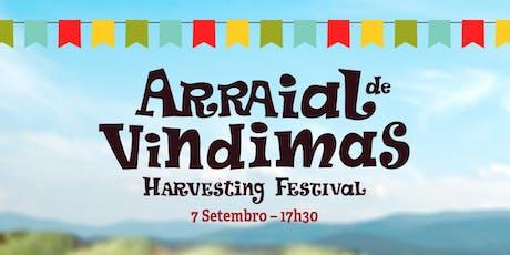Arraial de Vindimas | Harvest Festival bilhetes