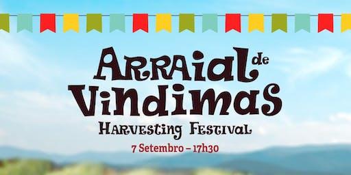 Arraial de Vindimas | Harvest Festival
