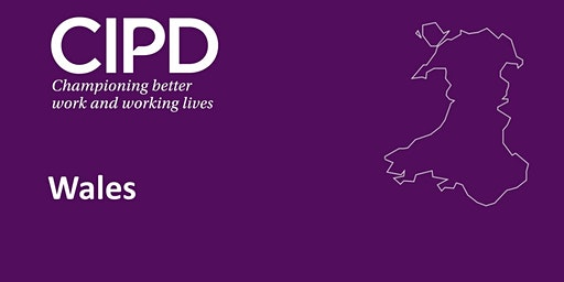 CIPD Wales - The New Profession Map - Core Behaviours - Insights focused