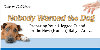 Nobody Warned the Dog: Preparing Your 4-Legged Friend for the New (Human) Baby's Arrival