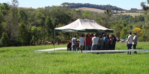 DIA DE CAMPO: QUALIDADE, MANEJO E PRODUÇÃO DE LEITE
