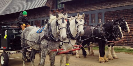 Horse-Drawn Wagon Rides - November 2, 2019 tickets