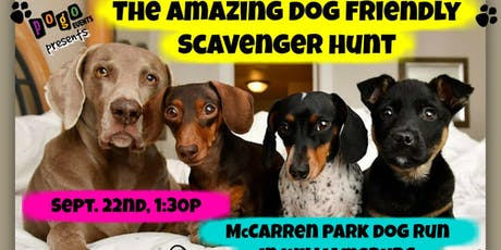 The Amazing Dog Friendly Scavenger Hunt tickets