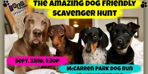 The Amazing Dog Friendly Scavenger Hunt