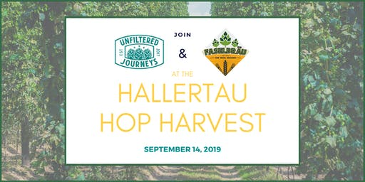 Hallertau Hop Harvest with Unfiltered Journeys and Faselbräu