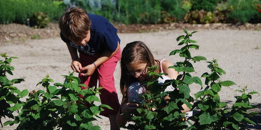 Bruce Botanical Food Gardens - Cooking Classes for Kids (Ages 5 to 8)