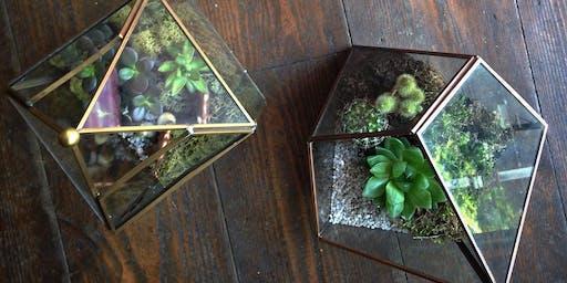 Terrarium Masterclass with Moss & Clover