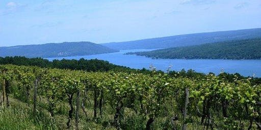 Wine School at The Little Club - FLX