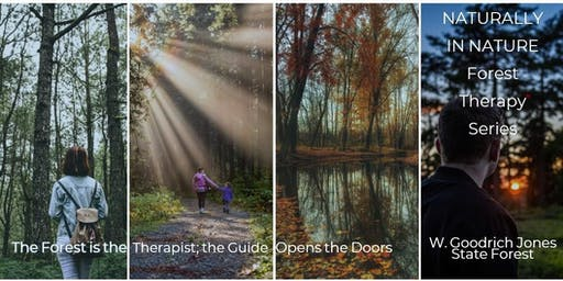 Naturally in Nature - Forest Therapy (Kids with Caregivers)