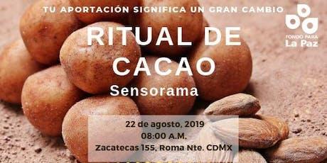 Ritual de cacao, sensorama entradas